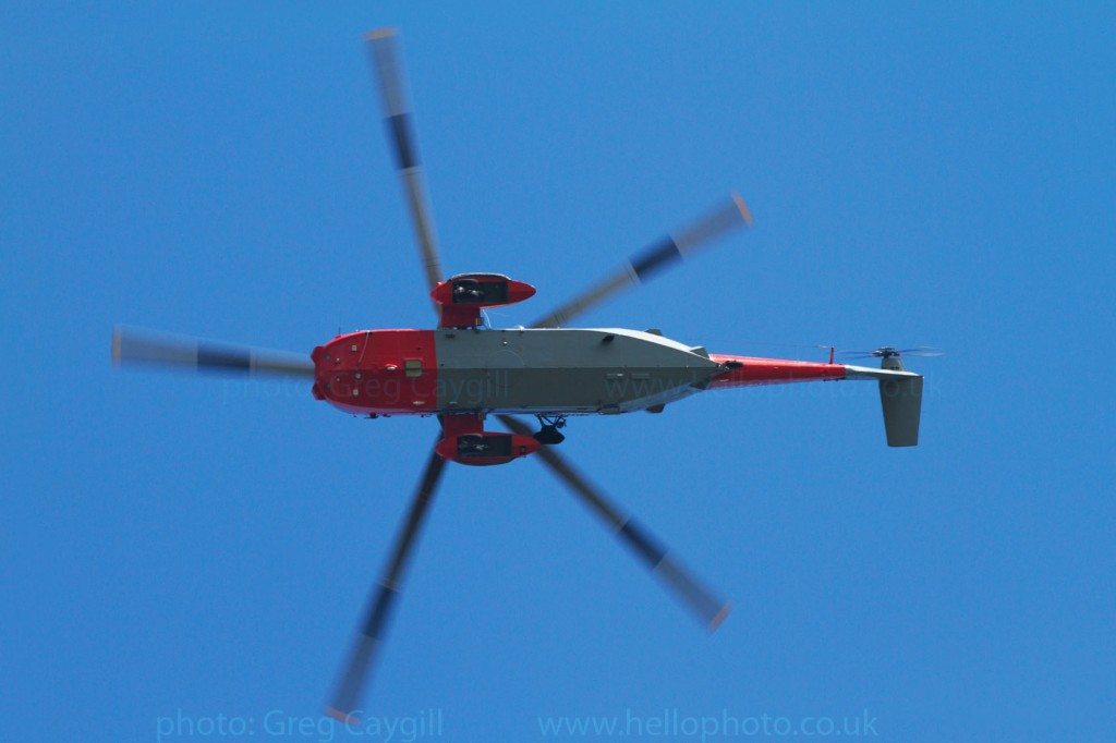 771 seaking 20_9962_ZA127_img9962_web