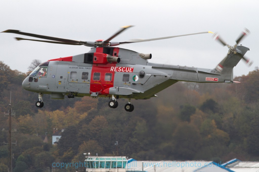 Algerian Merlin, ZR838. 2 Nov 2011. img1539